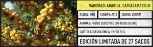 catuai_amarillo